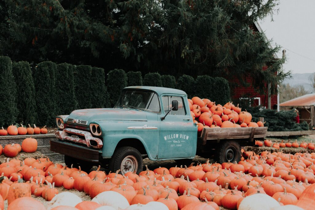 A Pumpkin Sale is one of many great Halloween Themed Fundraising Ideas